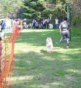 2008 HUS☆HUG 016