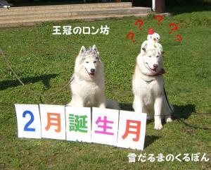2008 HUS☆HUG 017