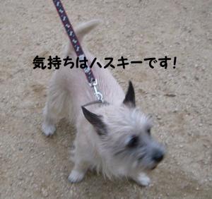 2008 9月大高ラン 002
