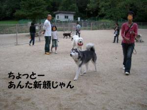 2008 9月大高ラン 003