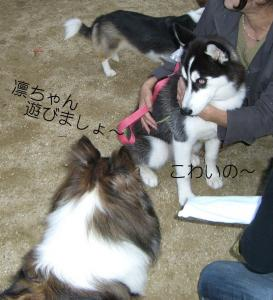 2008 9月大高ラン 009