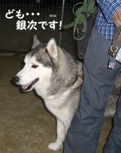 2008 9月大高ラン 010