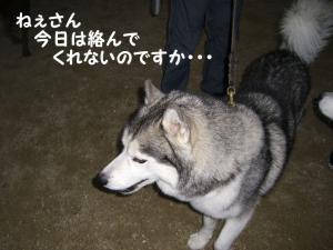 2008 9月大高ラン 012