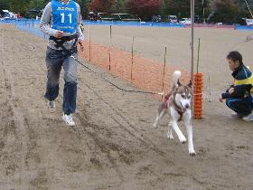 2008 11月京都ギグ 119(1)
