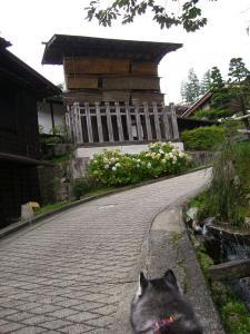 200908木曽路 (52)_800