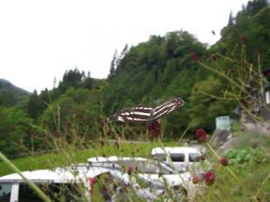 200908木曽路 (111)_800