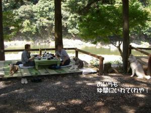 2009 9月鮎料理 036