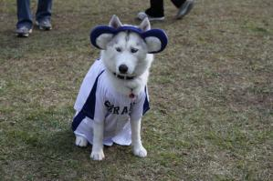2011 10月HUS☆HUG 397