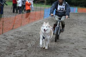 2011 11月ギグレースin京都 405