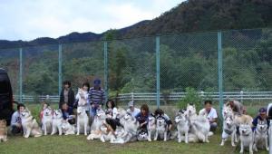 2011 11月ギグレースin京都 113a