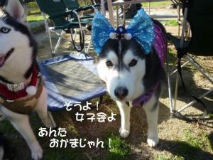2011 11月愛ハス女子会 090a