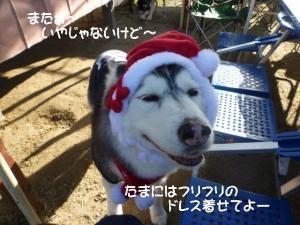 2011 11月愛ハス女子会 088a