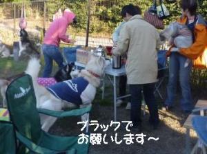 2011 11月愛ハス女子会 113a