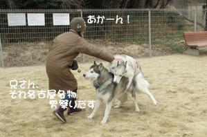 2012 2月大高ラン&大須 012a