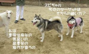 2012 2月大高ラン&大須 008a