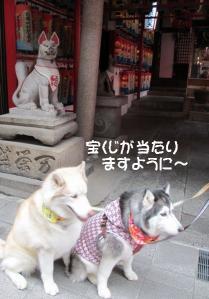 2012 2月大高ラン&大須 026