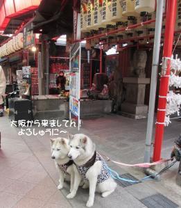 2012 2月大高ラン&大須 028