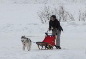 2012 3月ひるがの橇練 020a