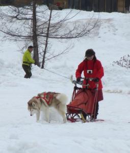 2012 3月ひるがの橇練 015a