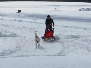 2012 3月ひるがの橇練 039