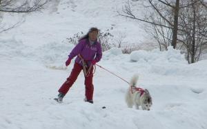 2012 3月ひるがの橇練 017a