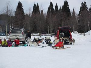 2012 3月ひるがの橇練 025