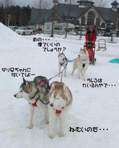 2012 3月ひるがの橇練 027
