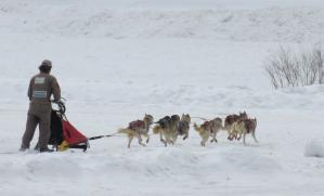 2012 3月ひるがの橇練 024