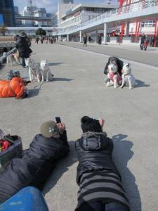 2012 3月神戸・六甲・大阪ビアガーデン 046