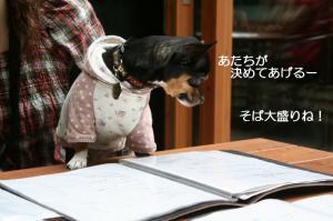 IMG_4792_800.jpg