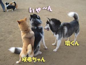 2_2008-07-21-009.jpg