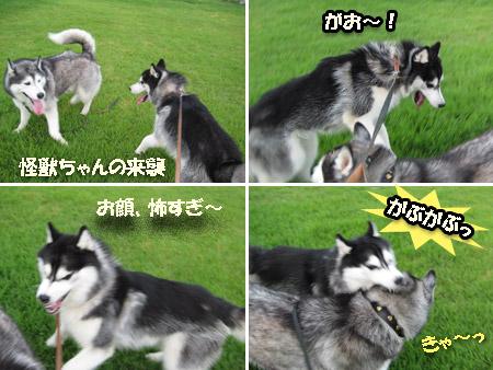 2_kaiju.jpg