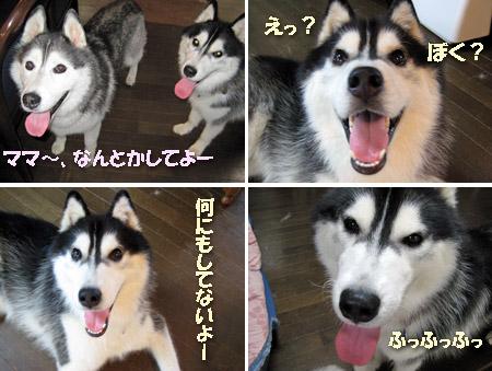 7image4.jpg
