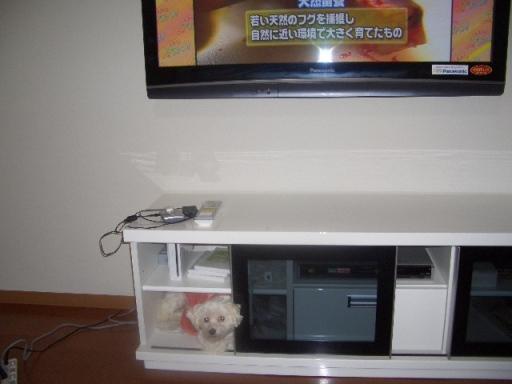 20024.jpg