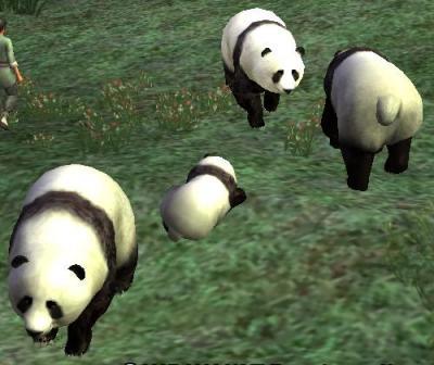 20080713正装祭り(パンダ)