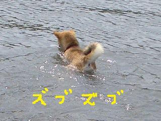 ichi21 092