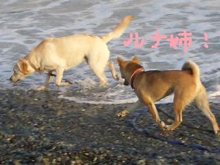 ichi23 057