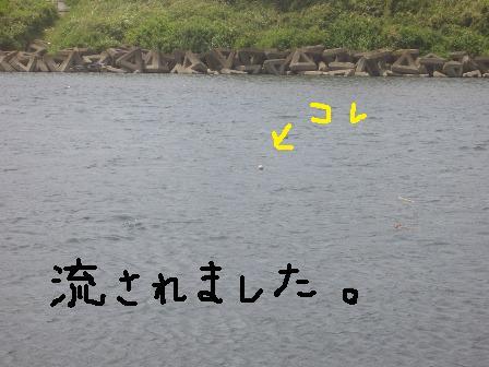ichi20f.jpg