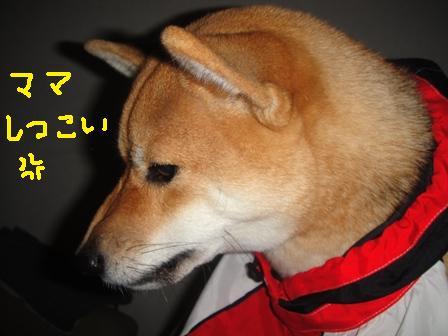 ichi38-f.jpg