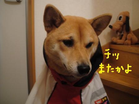 ichi38-i.jpg