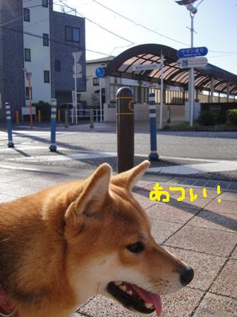 ichi43b.jpg