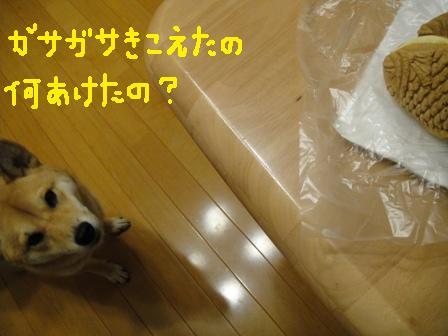 ichi43p.jpg