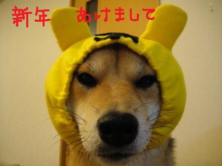 ichi46a.jpg