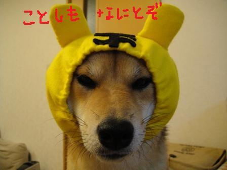 ichi46b.jpg