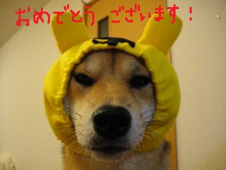 ichi46c.jpg