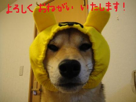 ichi46e.jpg