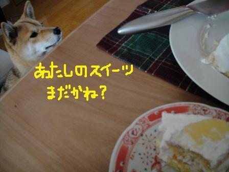ichi46h.jpg