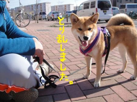 ichi46u.jpg