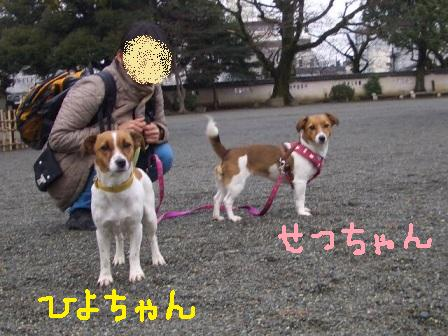 ichi9d.jpg