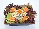 s-Salad Metcha (2)